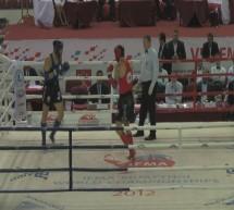Padec z ringa ustavil Tadeja Toplaka