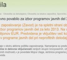 Programi javnih del za leto 2013