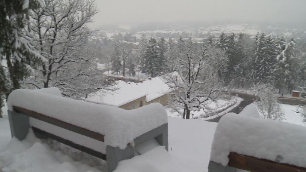 Sneg je pobelil pokrajino