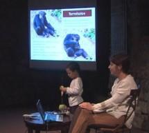 Predavanje o Savanskih šimpanzih