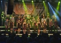 5. Glasbeni festival Arsana otvorili Perpetuum Jazzile