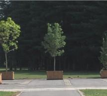 Prenova novega rogozniškega pokopališča