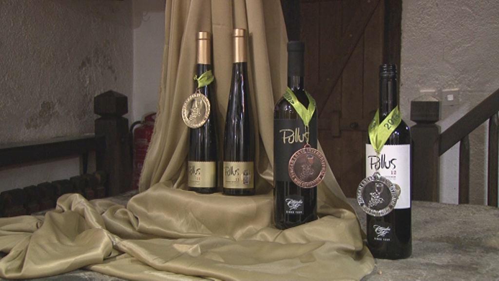 Nove nagrade za vina Ptujske kleti