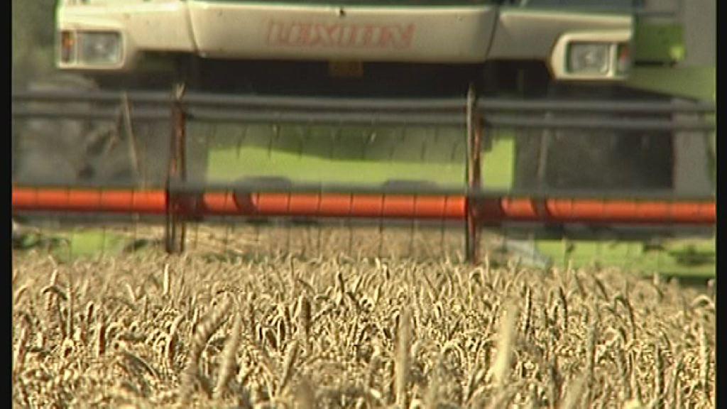 Zbiranje vlog za kmetijske subvencije
