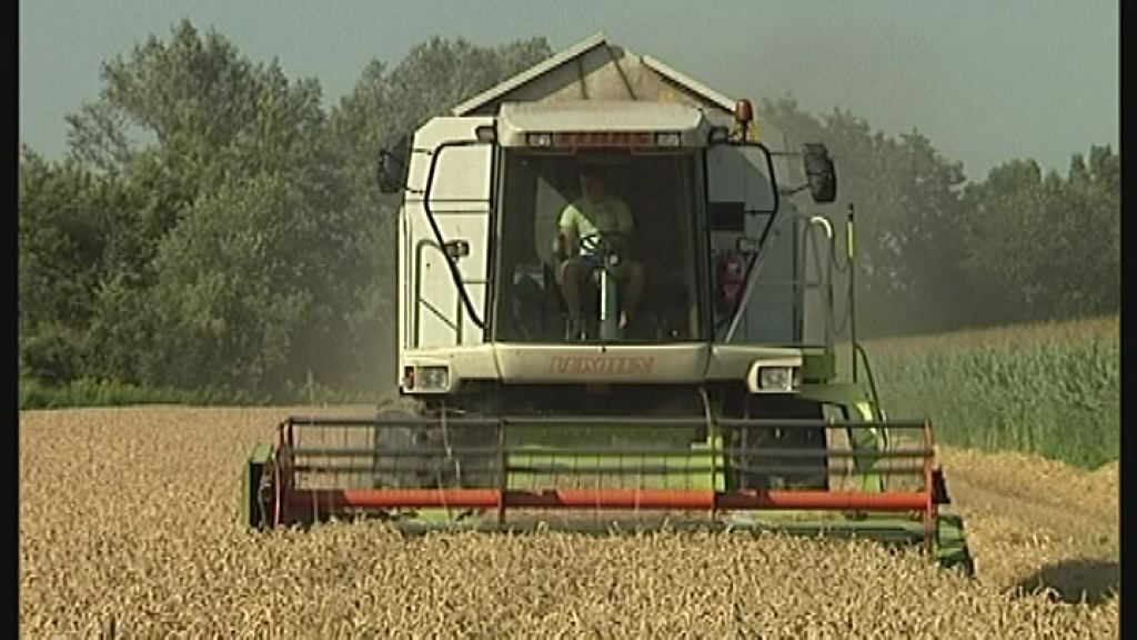 Kmetijske subvencije