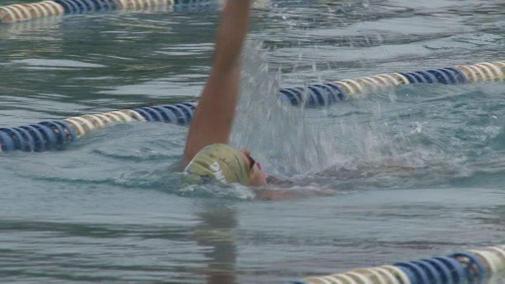 DP v plavanju za veterane