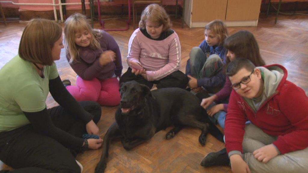 terapija s psi