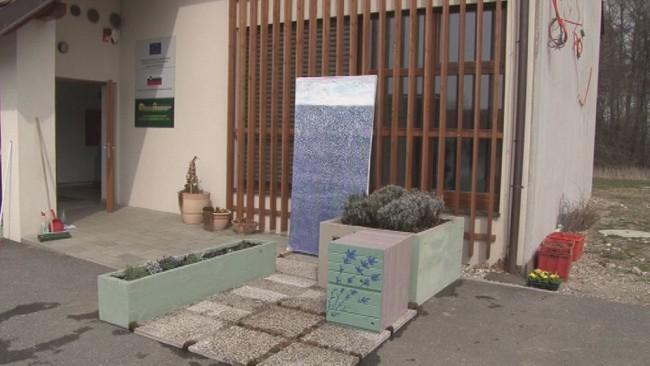 Dijaki Biotehniške šole Ptuj tekmovali na Flori