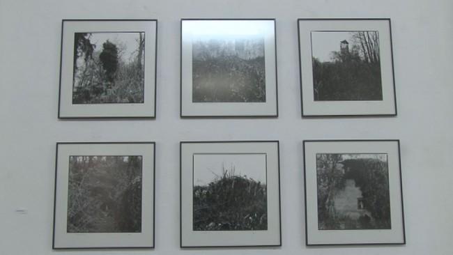 Ptujski fotografi razstavljajo v Majšperku