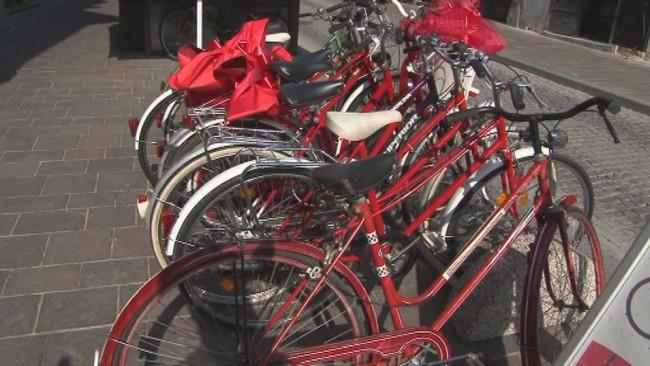 Sistem izposoje koles na Ptuju