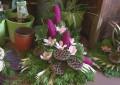 Cvetje ob 1. novembru