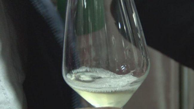 V Ptujski kleti načrtujejo dober vinski letnik