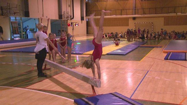 Božično-novoletni gimnastični nastop