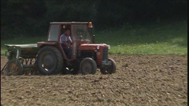 Pozeba in suša zaznamovali kmetijsko leto