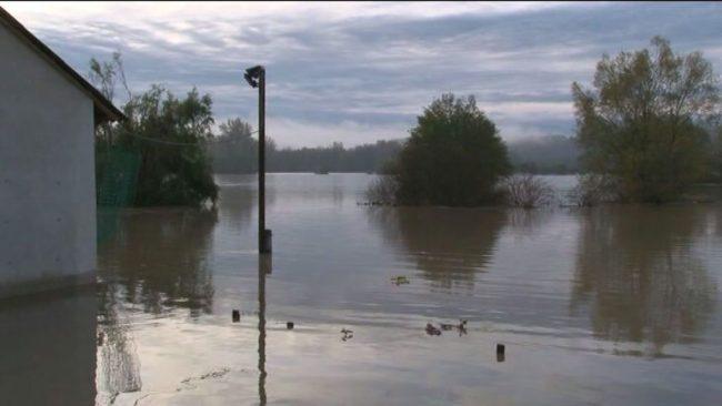 Poplavljanje reke Drave