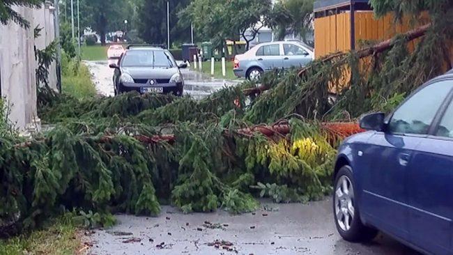 Pomoč po naravnih nesrečah