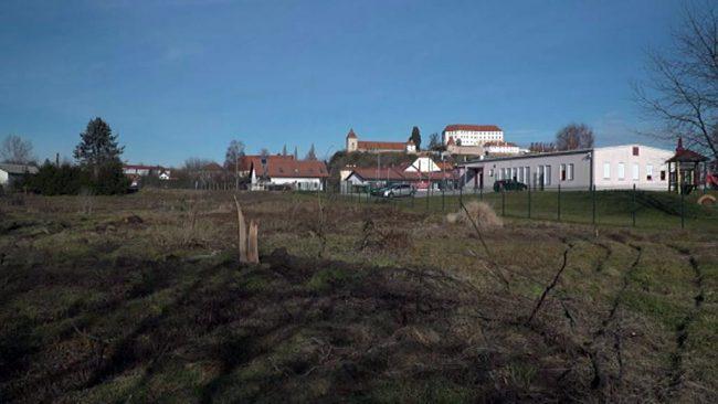 Prvi urbani vrtovi na Ptuju na Mlinski cesti