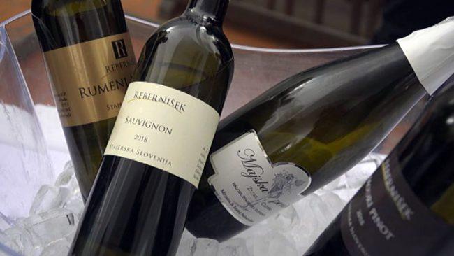 Veni vidi vino mlado 2020