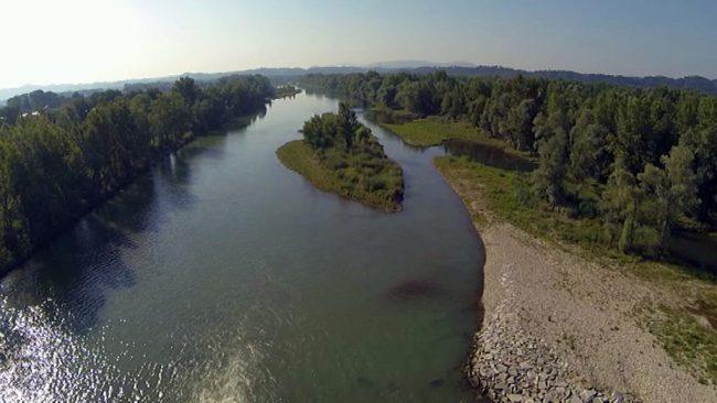 Projekt Drava – Natura 2000