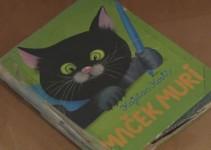 Mačje mesto Mačka Murija