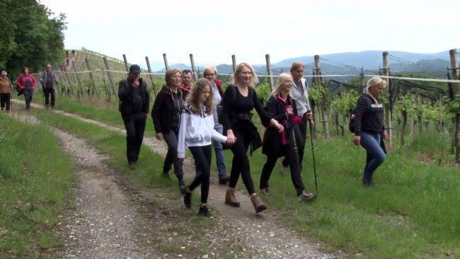 29. tradicionalni pohod po Haloški planinski poti